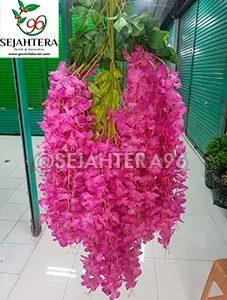 wisteria jumbo warna fanta florist surabaya