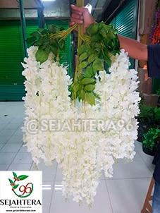 wisteria jumbo warna putih florist surabaya
