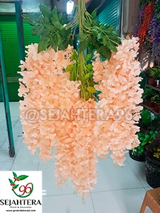 wisteria jumbo warna salem florist surabaya