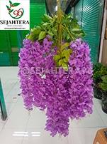 wisteria jumbo florist surabaya