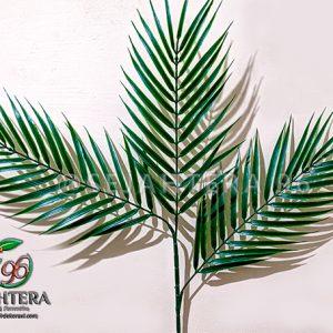 daun palm duri cabang 3