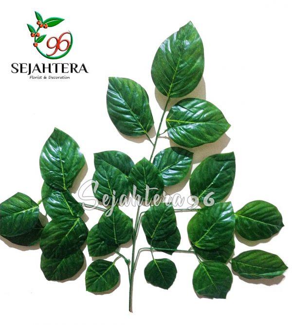 Batang daun jambu