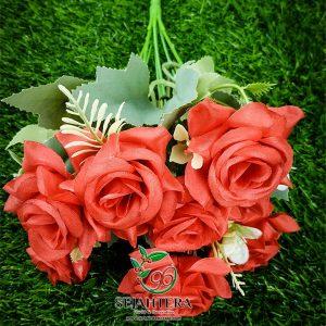 Rose Senyum Merah