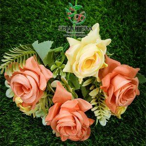 Rose Senyum Orange