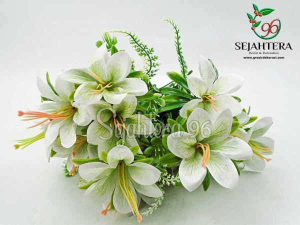 Bunga Kamboja Putih