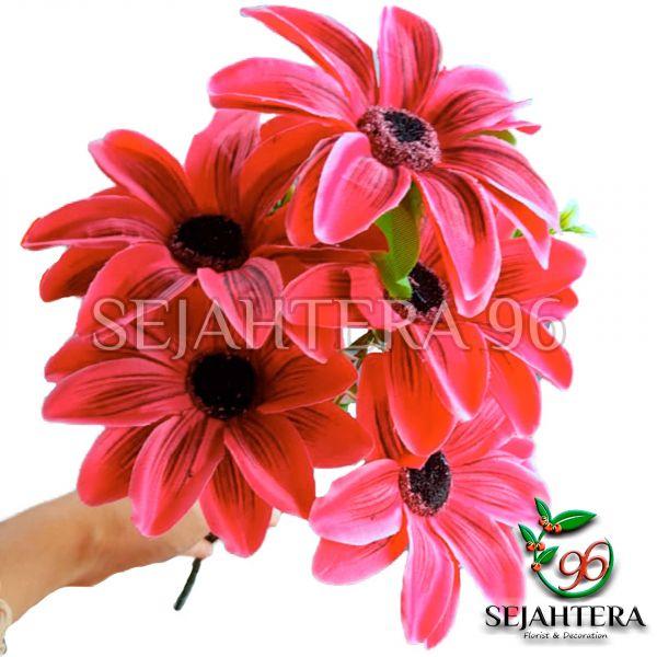 Bunga Amarilis X5 Fanta