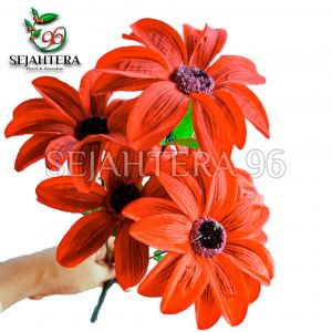 Bunga Amarilis X5 Merah