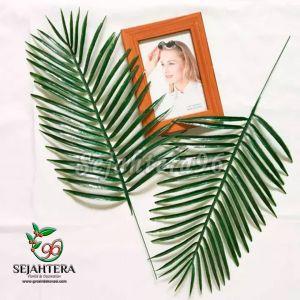Daun Palm AA Hiasan Dekorasi