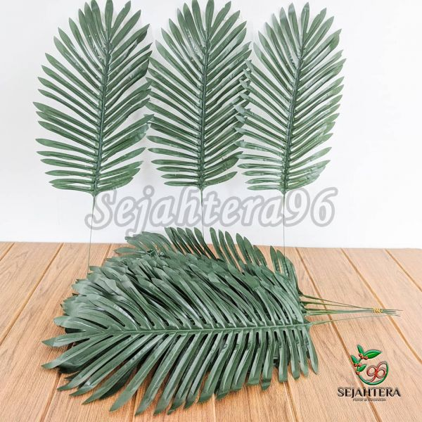 Daun Palm Cebol