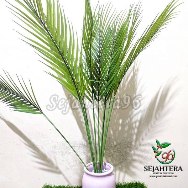 Daun Palm Latex L. Hiasan