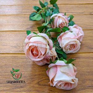Rose Blues pink
