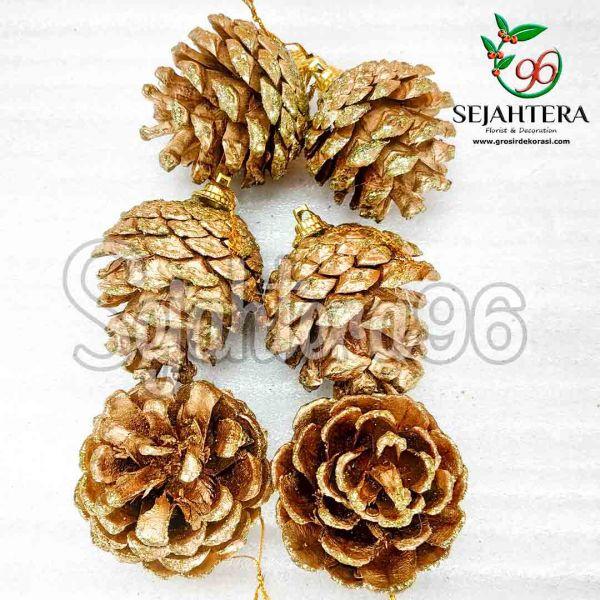 Pinus-3-4-cm-S6-Gold